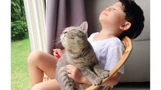 Cute Cats and Babies are best friends 👶🏻😸 Cat and Baby have fun time together