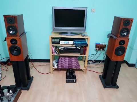 Musical Paradise MP 301 MK3 Eng Wo1