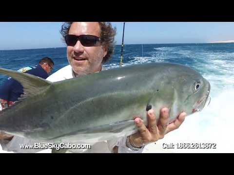 Fabulous Fishing Experience In Family | Cabo Fishing Charter Tuna Mahi Mahi | Blue Sky Cabo