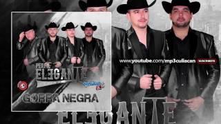 Perfil Elegante - Media Vida (Estudio 2016)