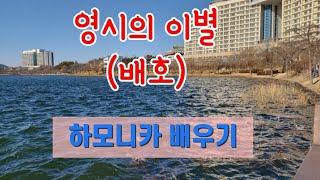 영시의 이별 - 하모니카 배우기