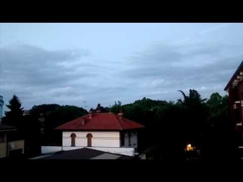 Canto del merlo al crepuscolo - Blackbird sings at dusk