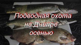 Подводная Охота в Дельте Днепра Осенью
