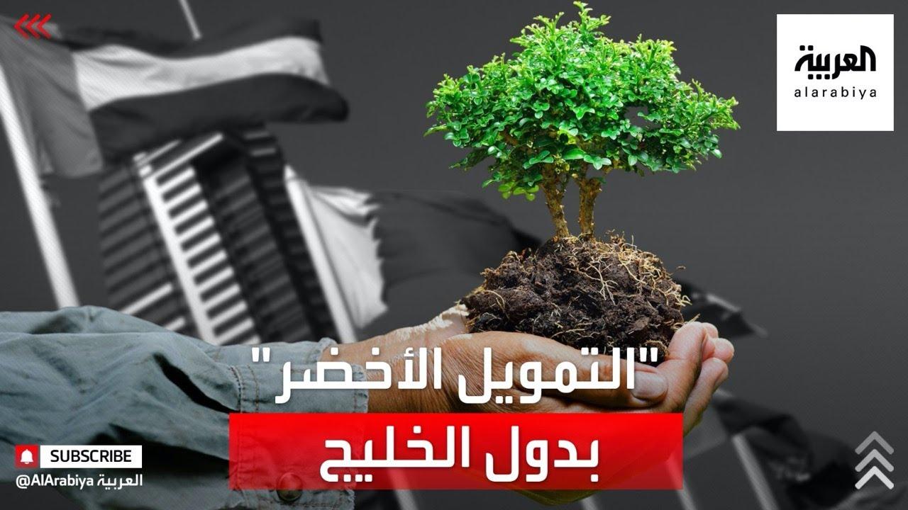 دول الخليج غنية بالطاقات المتجددة وهو ما سيساعدها على الاقتراض الأخضر وإصدار السندات الخضراء  - نشر قبل 2 ساعة