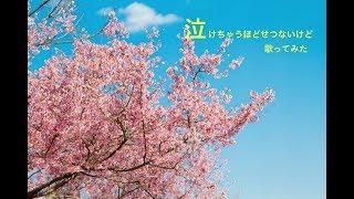 チャンネル登録よろしくお願い致します☆ https://www.youtube.com/chann...