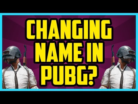 Can You Change Your Name On Battlegrounds Pubg Changing Name Discussion