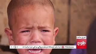LEMAR News 19 August 2017 / د لمر خبرونه ۱۳۹۶ د زمری ۲۸