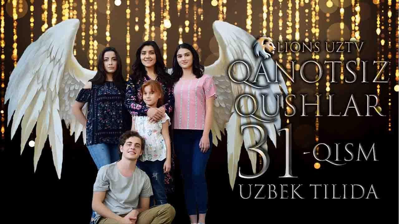 QANOTSIZ QUSHLAR 31 QISM TURK SERIALI UZBEK TILIDA | КАНОТСИЗ КУШЛАР 31 КИСМ УЗБЕК ТИЛИДА