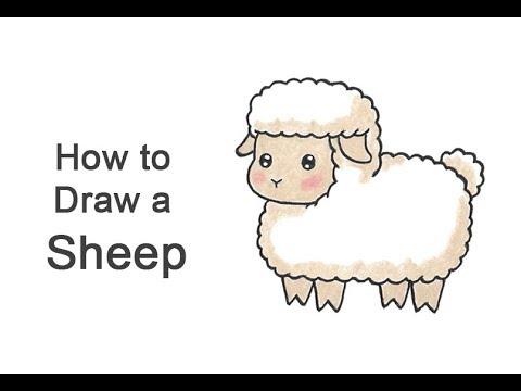 How To Draw A Sheep (Cartoon)