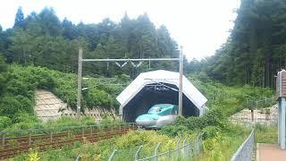 【令和初の夏休み】北海道新幹線 はやぶさ15号 新函館北斗行き E5系 2019.08.17