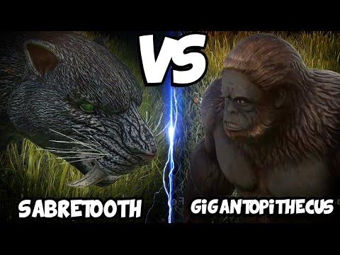 ARK Dinosaur Battle Arena   SABERTOOTH VS GIGANTOPITHECUS