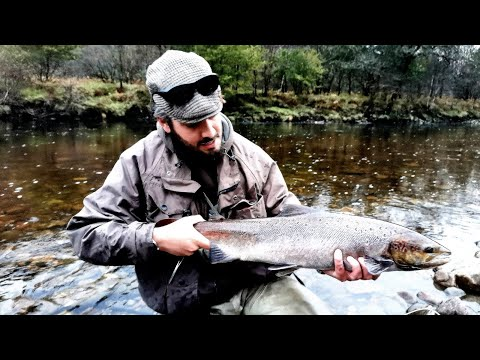 First Salmon Fly Fishing Scotland's  River Orchy