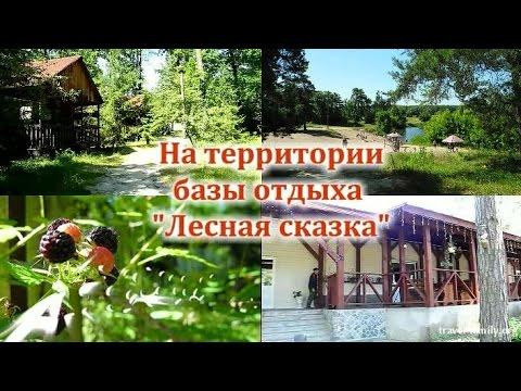 База отдыха Лесная сказка п Рамонь Воронежская область