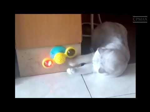 CPMAX 最新款轉轉風車貓咪玩具 轉盤逗貓玩具 抓癢蹭 逗貓玩具 貓咪磨牙 貓玩具 貓磨牙 逗貓玩具【H259】