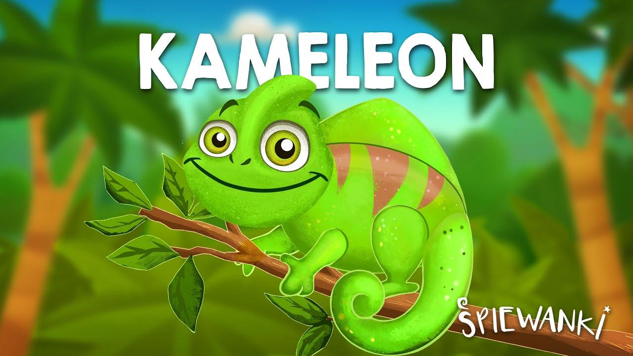 KAMELEON - Śpiewanki.tv - piosenki dla dzieci