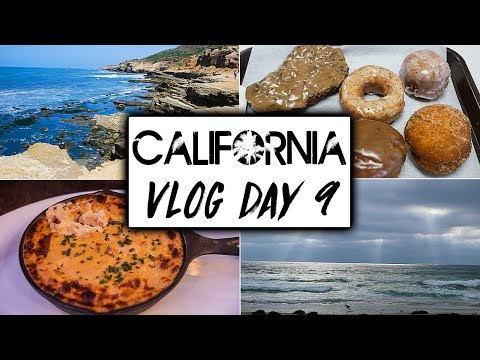 Daily California Vegan Travel VLOG Day 9  |  San Diego Vegan Food  |  Mission Beach & Sunset Cliffs