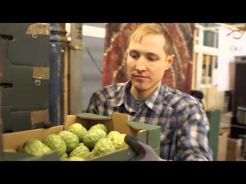 Anlieferung und Verteilung in der Markthalle IX - Berlin Fresh Food Coop