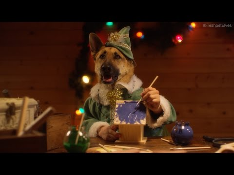 Cute Merry Christmas Wallpaper Dogs Santa S Elves Dogs And Cats With Free Humor Amp Pranks