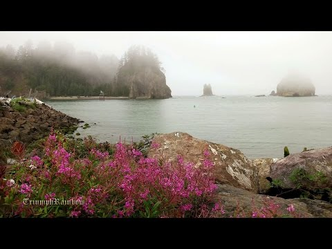 Rialto Beach La Push - Olympic National Park 4K UHD