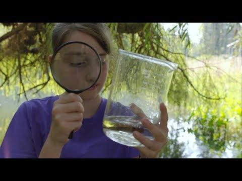 STEM Scholarship: Enabling Emily To Pursue Science