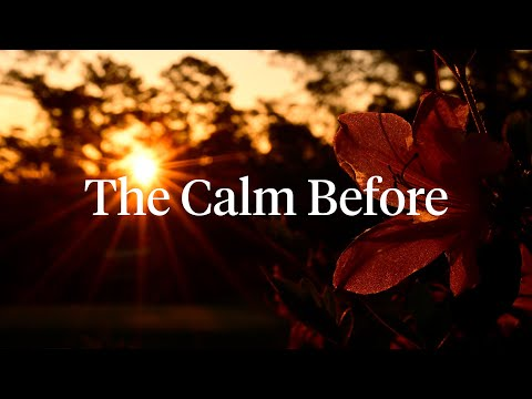 The Calm Before   The Masters