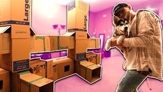 BUILDING MY PUPPY A GIANT BOX FORT! | David Vlas