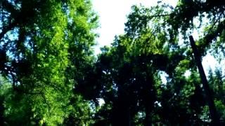 """Вся красота Ташкента в клипе Жанны Ким """"Мой Ташкент"""""""