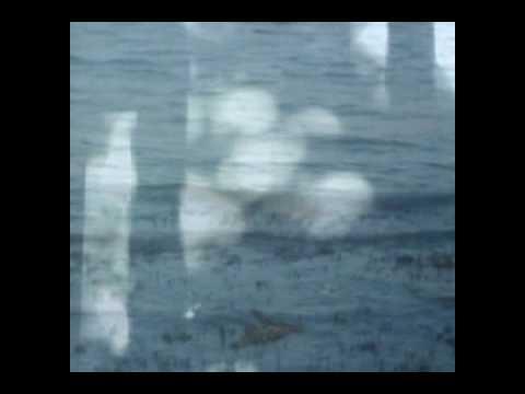 Buckethead - Electric Tears