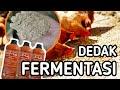 - Dedak fermentasi