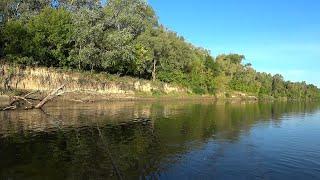 Рыбалка на Реке на Спиннинг Ловим Хищника на Блесны