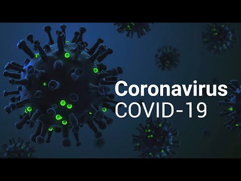 Анатомия коронавируса SARS-CoV-2
