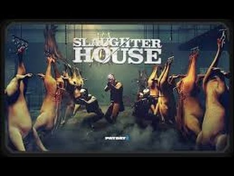 The Psychological Damage of Slaughterhouse Work