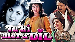 Tu Hi Mera Dil Songs Collection - Hindi Songs