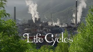Life Cycles - [UHD 4K] Official Trailer - Stance Films