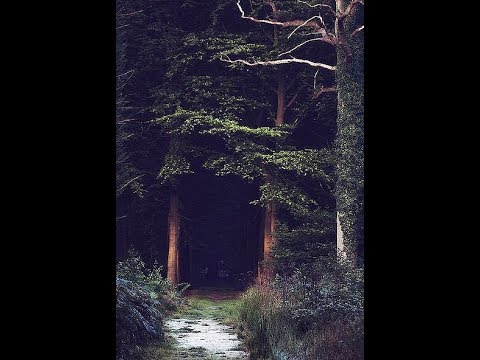 An Alchemical Journey to the Black Forest