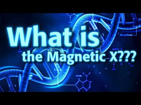 DNA and the Golden Ratio with Dan Winter | What is the Magnetic X?