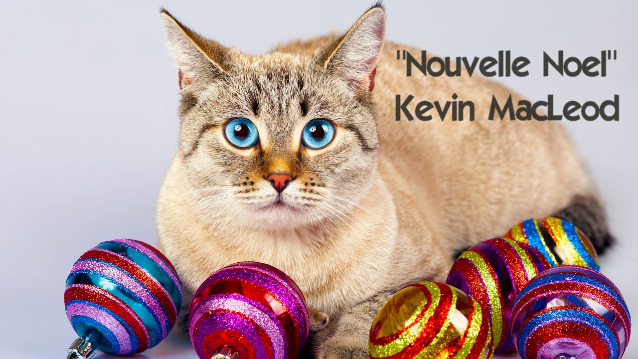 Image Result For Kevin Macleod Royalty Free Christmas Music