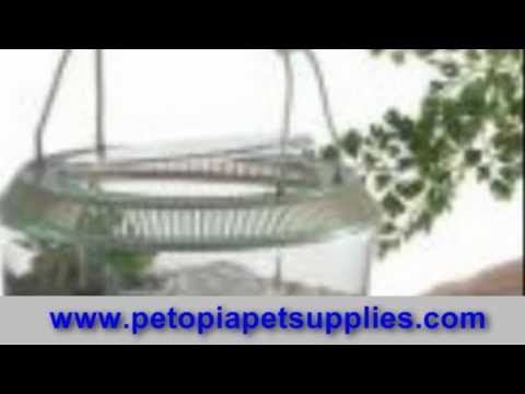 Pet Stores, Pet Supply Stores, Wholesale Pet, Dog Pet Stores