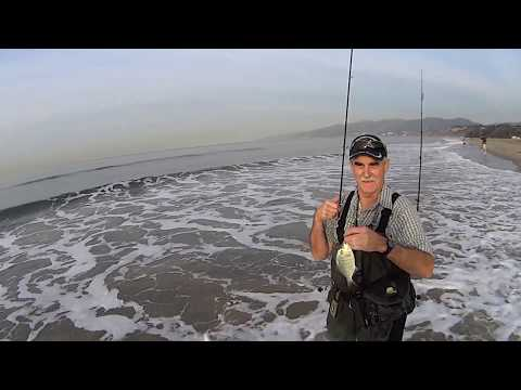 Surf Fishing Santa Monica