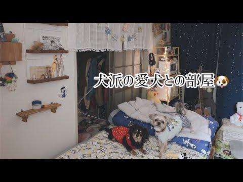 愛犬との暮らし Vol.1 (お部屋編)