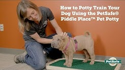 How to Potty Train Your Pet to Use the Piddle Place™ Portable Pet Potty
