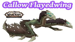 I Looted the Blight-Touched Egg ~ Callow Flayedwing Mount  @ 583 Attempts