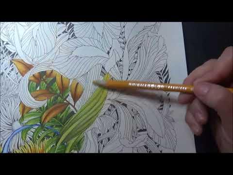 Floribunda Calendar Part 3 Lisa Brando Extreme Coloring