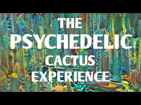 Scientist experiences healing with Huachuma / San Pedro / Mescaline   Dr. James Cooke [trip report]