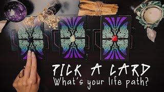 Pick A Card |