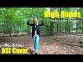 High Hopes | ASL Cover | Bee Adams