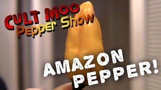 Amazon Pepper - Pepper Show - Ep.29