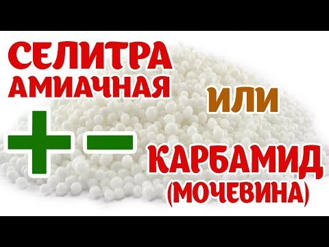 Пестрый рис - быстрый постный рецепт!из YouTube · Длительность: 1 мин1 с