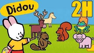 2 heures de Didou - Didou dessine-moi les animaux de la forêt | Compilation HD