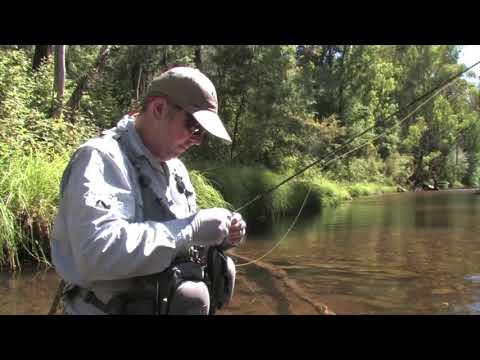 OTF 9 1 Gavin Hurley Fly Fishing In Gippslands Streams
